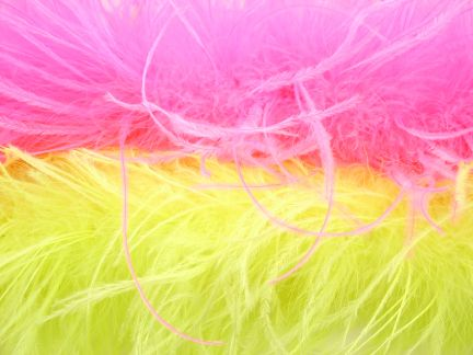 Dancewear Feathers & Trims