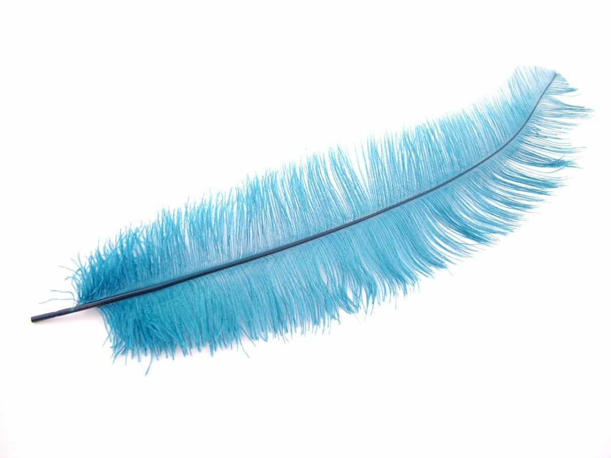Ostrich Feathers Dyed Ostrich Wing Feathers For Costumes