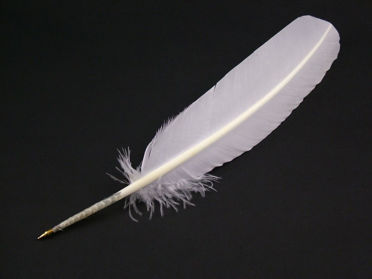 pin featherpens on pinterest