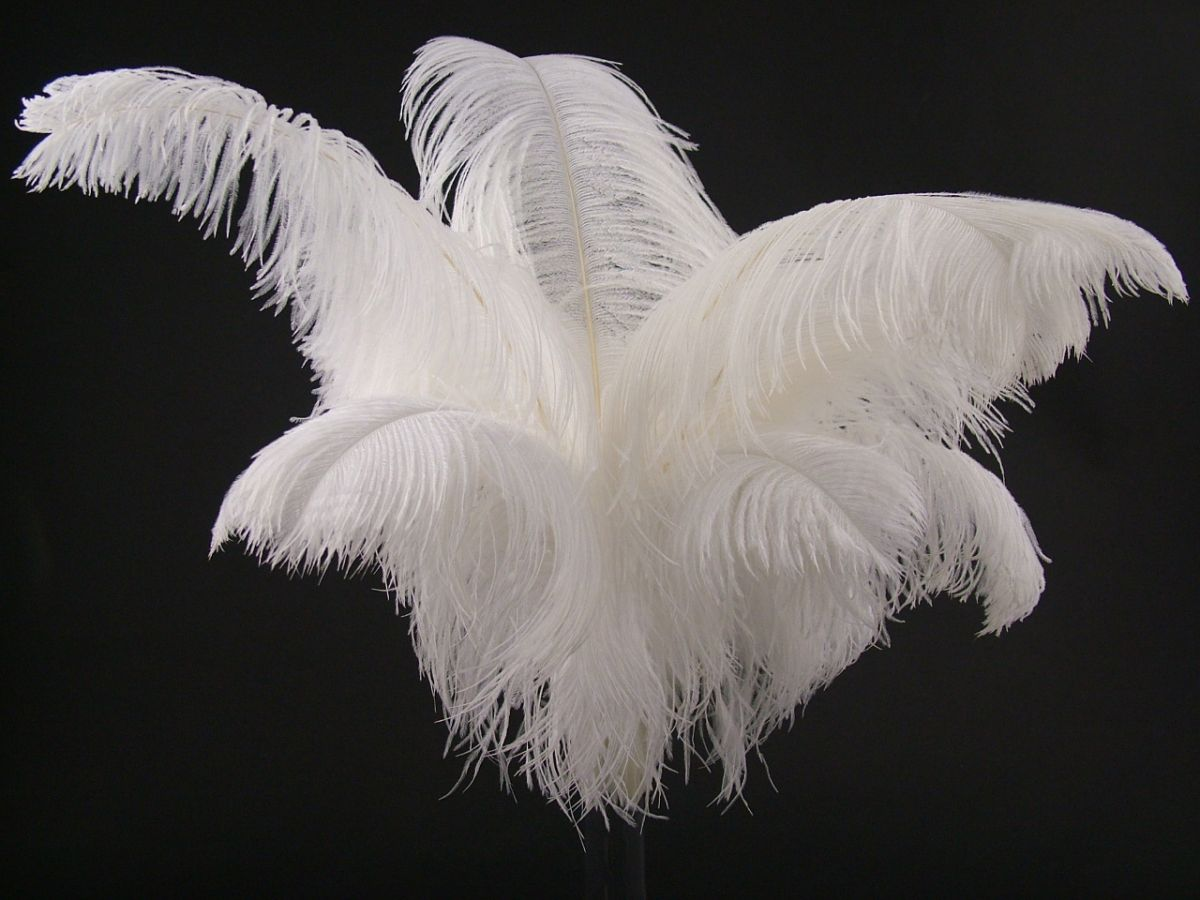 Ostrich Feathers Wedding Table Decorations Feather Factory