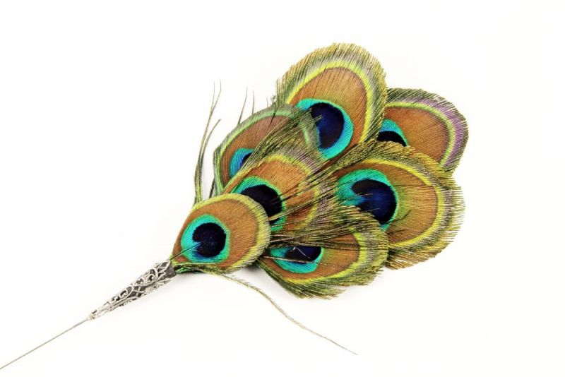 Small Peacock Eye Feather Hat Pin 2