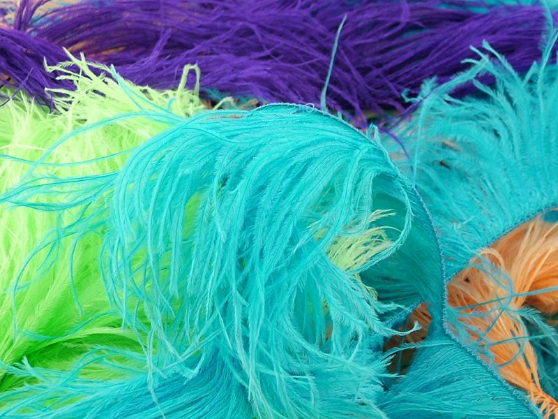 Ostrich Feather Fringe - 2 Ply on a Cord 1