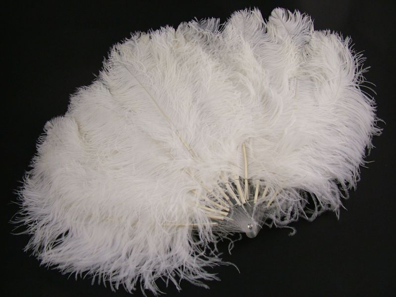 Deluxe Burlesque Ostrich Feather Fan 2