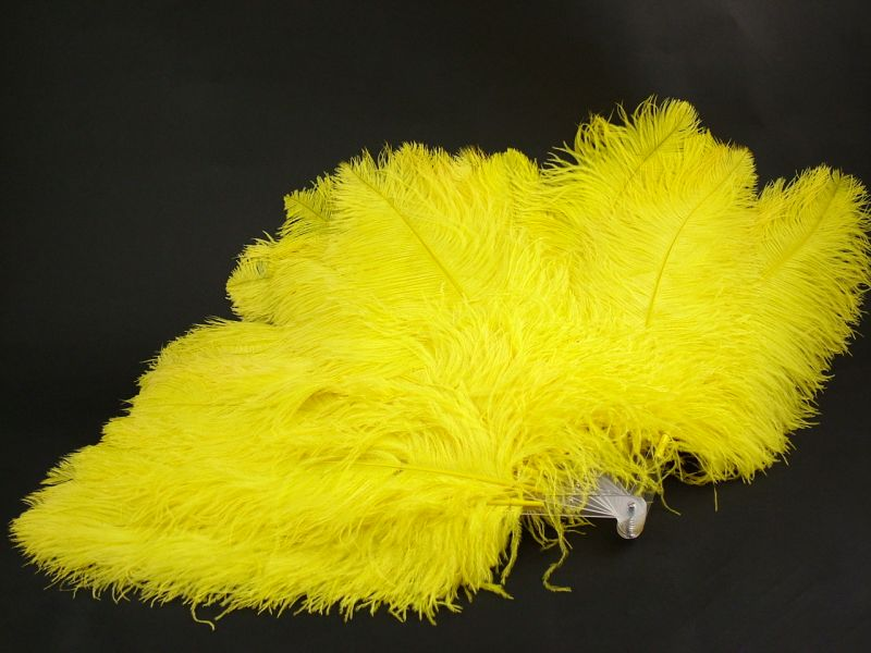 Deluxe Burlesque Ostrich Feather Fan 3