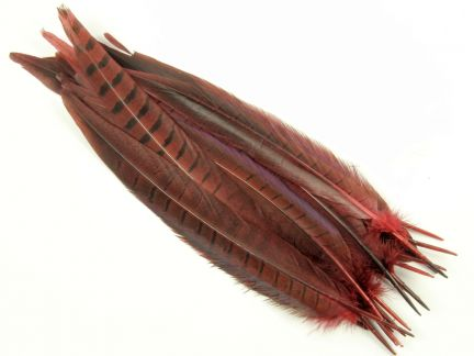 Special Offer Burgundy (seconds) Ringneck Pheasant Sides (Pack of 20)