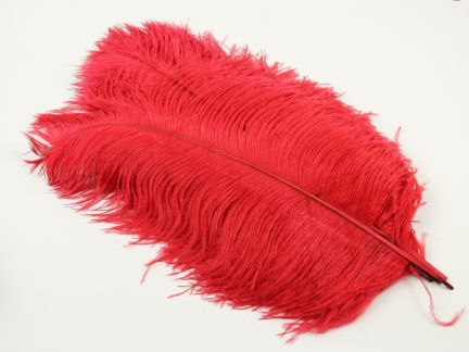 Special Offer Red Scraped Short Ostrich Premium Wing Feather (pack of 5)
