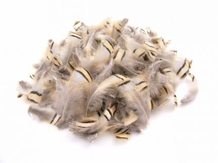 French Partridge Plumage (10g Pack)