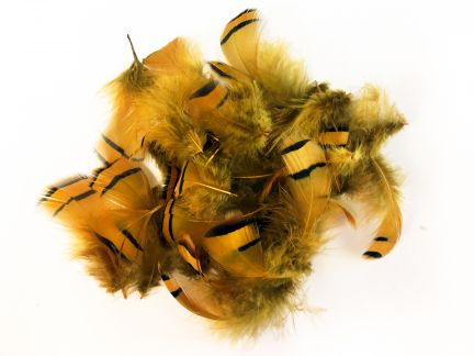 Dyed Partridge Plumage (10g Pack)