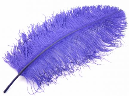 Ostrich Premium Wing Feather (50-65cm)