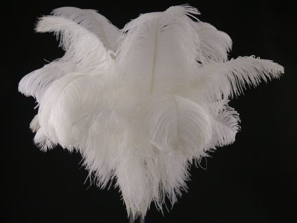 Large Ostrich Feather Table Centrepiece