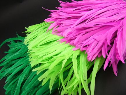 Dancewear Coque Feather Fringe