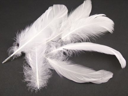 Large Goose Plumage Feathers (0.25kg)