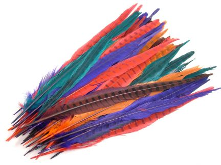 Pheasant Craft Pack (approx 50 feathers)