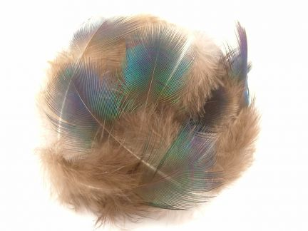 Peacock Green Plumage (5g Pack)