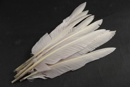 Special offer Blush Goose Quills Seconds (pack of 15)