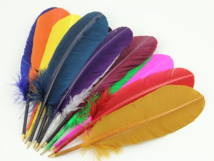 Fun Party Pack of Turkey Quill pens